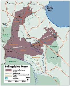Flylingdales conservation area